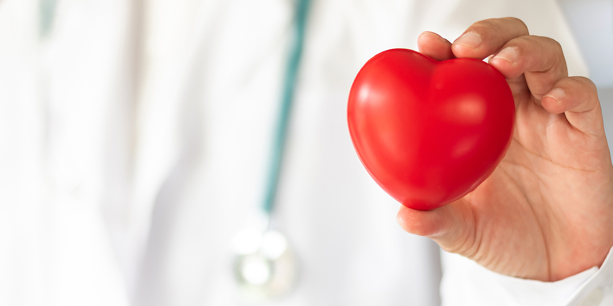 medical person holding a plastic heart shape